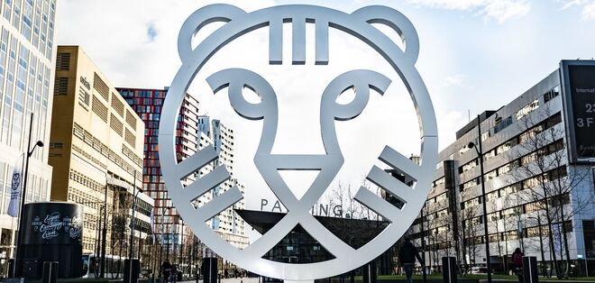 International Film Festival Rotterdam (IFFR)