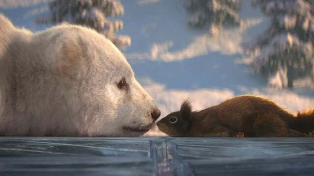 Must see: Bear and Squirrel