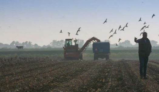 TV-serie | Kunst van het Boeren | Omroep Brabant