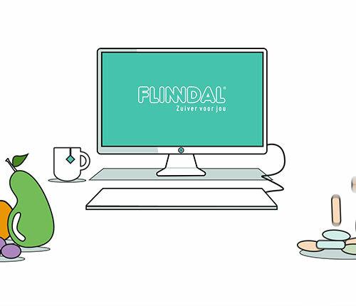 Uitleganimatie - Hoe werkt Flinndal?