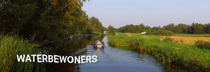 Webserie: Waterbewoners